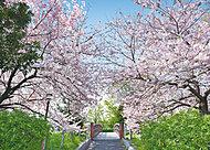 都立東綾瀬公園 約60m(徒歩1分)