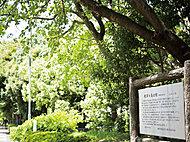 教育の森公園 約460m(徒歩6分)