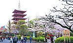 浅草寺 約1,030m(徒歩13分)