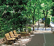 区立大島緑道公園 約170m(徒歩3分)