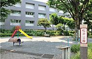 松沢公園 約210m(徒歩3分)