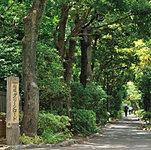 船堀グリーンロード 約160m(徒歩2分)