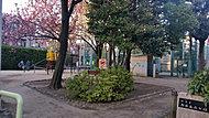 阿佐谷西公園 約150m(徒歩2分)