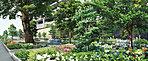 季節を彩る植栽計画を施した、潤いの公園を併設。四季の表情豊かな樹木や草花がひと時心を癒してくれます。