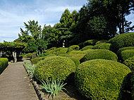 箭弓稲荷神社内ぼたん園 約500m(徒歩7分)