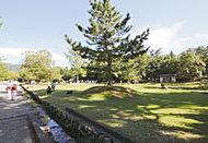 奈良公園 約1,620m(徒歩21分)