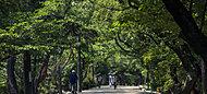 夙川オアシスロード 約70m(徒歩1分)