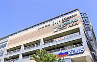 昭和大学江東豊洲病院 約890m(徒歩12分)