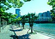毛馬桜之宮公園 約140m(徒歩2分)