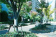 上穂積一丁目第3児童遊園 約30m(徒歩1分)