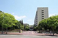 姫路市役所 約480m(徒歩6分)