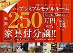 【プレミアムモデルルーム限定1邸】250万円相当の厳選した家具をそのままお付けして特別価格にて分譲いたします。