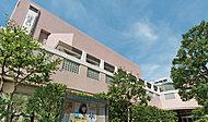 墨田区曳舟文化センター 約740m(徒歩10分)