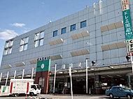 JR鹿児島本線「香椎」駅(徒歩7分・約500m)