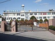 香椎小学校(徒歩4分・約290m)