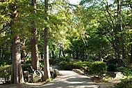 南流山中央公園 約420m(徒歩6分)