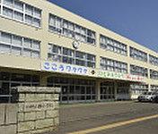 札幌市立西小学校 約760m(徒歩10分)