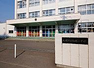 札幌市立白楊小学校 約160m(徒歩2分)