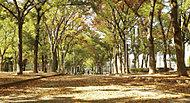 泉尾公園 約450m(徒歩6分)