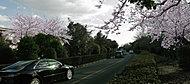 元茨木川緑地 約370m(徒歩5分)