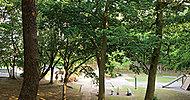 実籾自然公園 約500m(徒歩7分)