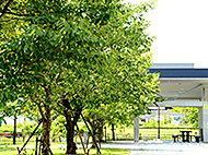 におどり公園 約710m(徒歩9分)