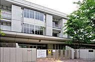 区立駒沢小学校 約640m(徒歩8分)