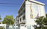 中豊島小学校 約540m(徒歩7分)
