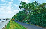 花見川サイクリングロード 約300m(徒歩4分)