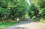尾根緑道 約310m(徒歩4分)