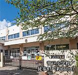 青戸小学校 約640m(徒歩8分)
