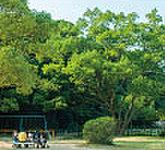 住吉公園 約500m(徒歩7分)