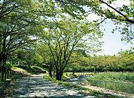 細口池公園 約440m(徒歩6分)