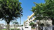 区立関町小学校 約380m(徒歩5分)
