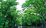 すすき野二丁目公園 (現地より約120m/徒歩2分)