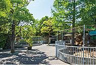 江戸川区自然動物園 約2,820m(徒歩36分)