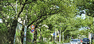 宮前平メディカルモール 約2,810m(自転車15分)