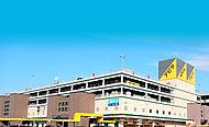 アピタ岡崎北店(徒歩8分/約590m)