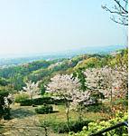 金沢自然公園(金沢動物園) 約4,250m(車7分)