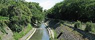 善福寺川緑地 約2,000m(徒歩25分)