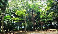 中野木緑地 約370m(徒歩5分)