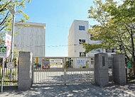市立八尾小学校 約340m(徒歩5分)