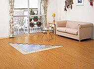足元から身体を暖める床暖房は温風暖房とは異なり、ホコリを舞い上げる心配がありません。