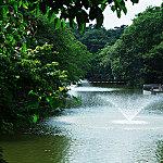 井の頭池 約470m(徒歩6分)