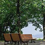 平和公園 約490m(徒歩7分)