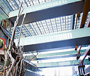 二子玉川ライズ・ショッピングセンター 約1,850m(自転車10分)