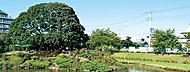 井沼方公園 約50m(徒歩1分)