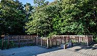 区立上野毛自然公園 約450m(徒歩6分)