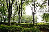 上野恩賜公園 約1,920m(徒歩24分)