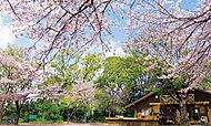 綱島公園 約1,180m(徒歩15分)